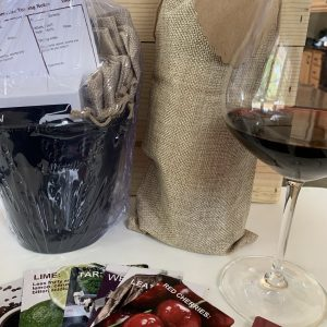 VINO! Wine Party In a Bag
